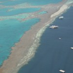 ponton met het reef