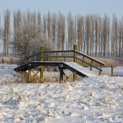 Winter in Waterland