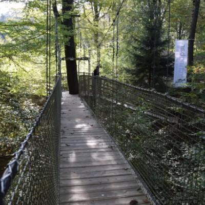 pad naar de Perchingbar, Verzy