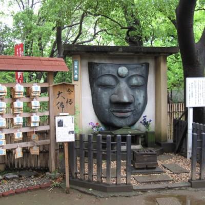 boeddha hoofd bij tempel