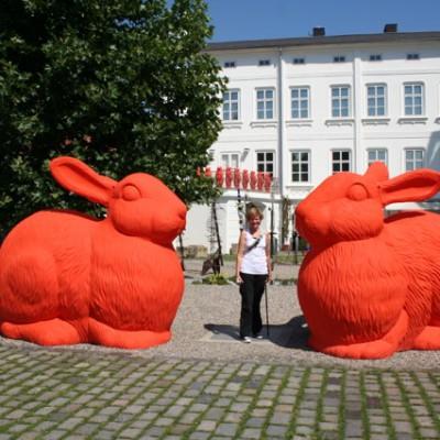Hermy en 2 grote konijnen